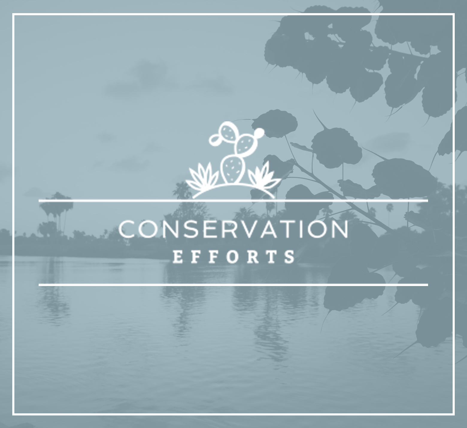 CONSERVATION-EFFORTS