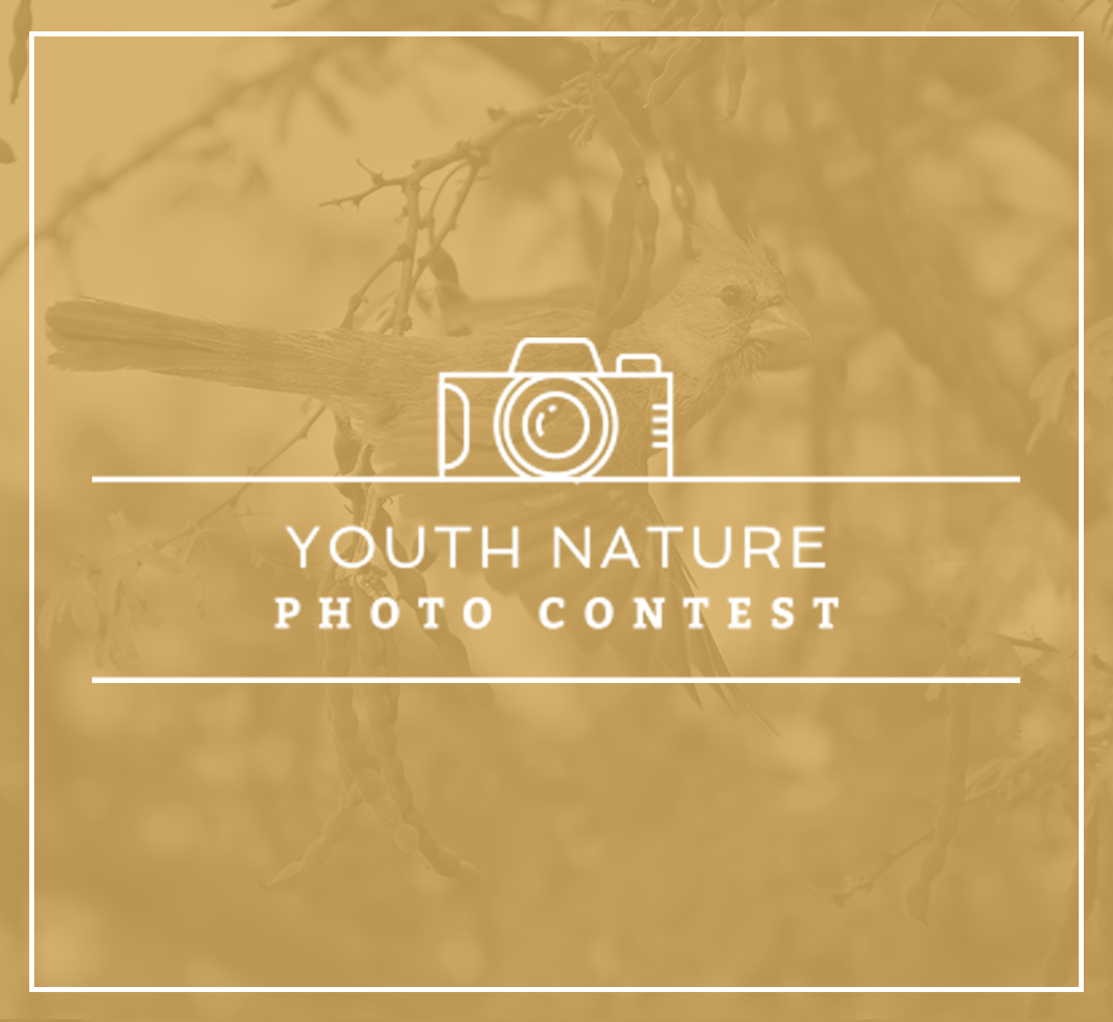 YOUTH-NATURE